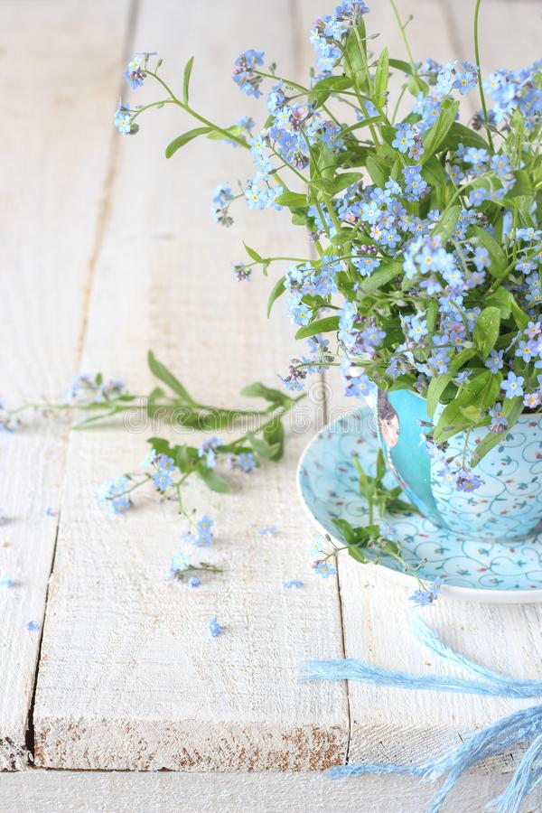 Still life with tiny spring flowers in a blue cup. Still life with tiny spring flowers - forget-me-nots in a blue cup on a white wooden table royalty free stock image