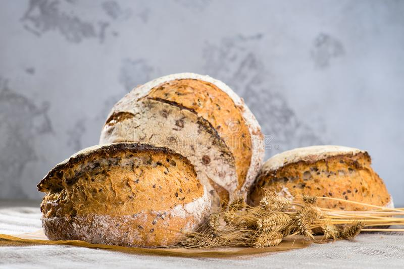Still life with a traditional round artisan rye bread loaves wit. H walnut and seeds on wooden cutting board, near the wheat royalty free stock image