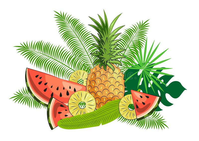 Still Life Of Tropical Fruits And Leaves: Pineapple ...