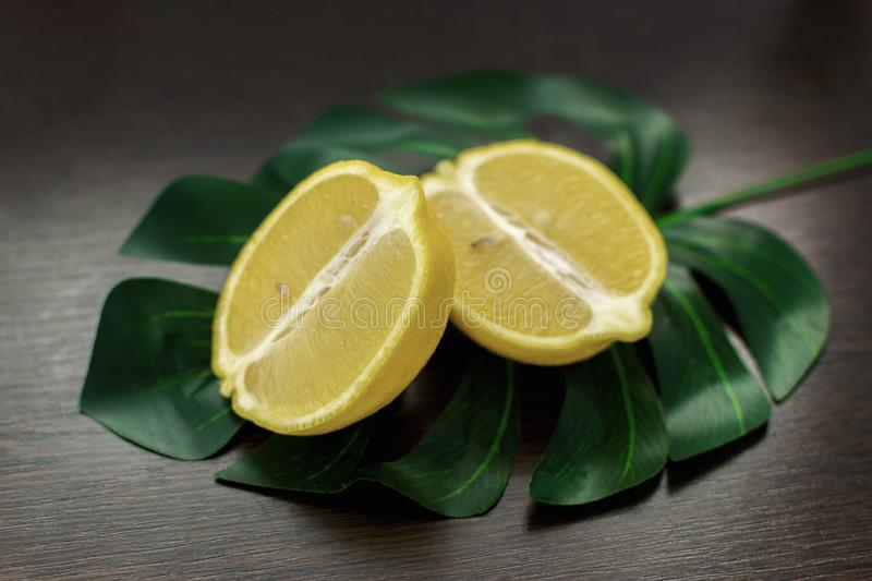 Still life of two juicy slices of lemon stock image