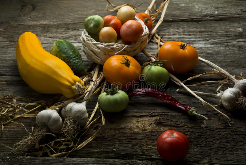 Still life with a vegetable marrow and tomatoes stock photography