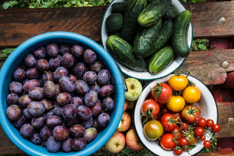 Still life of vegetables and fruits stock images