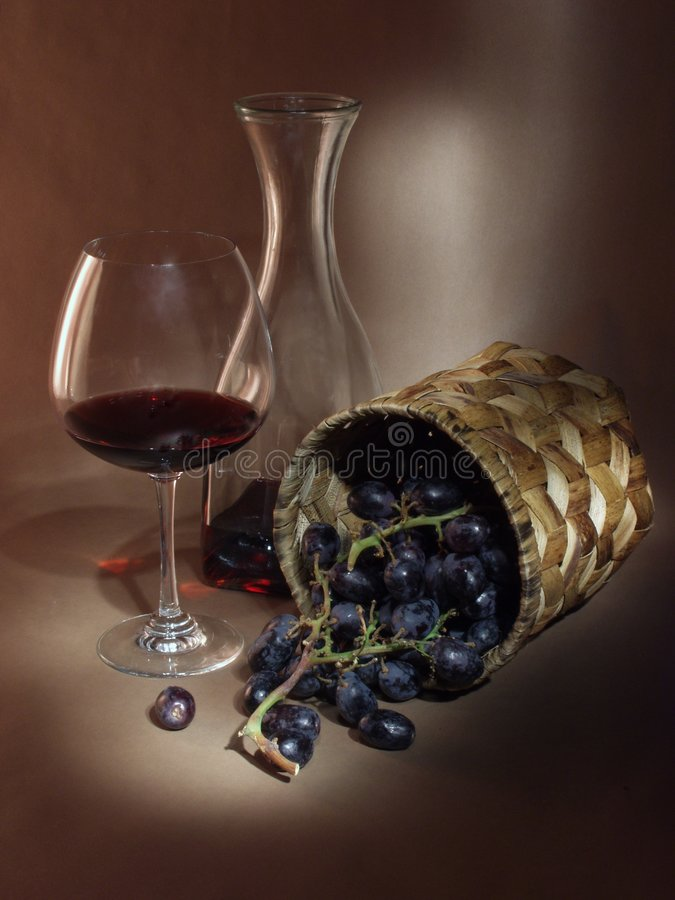 Still Life With Vine and Wine stock photo