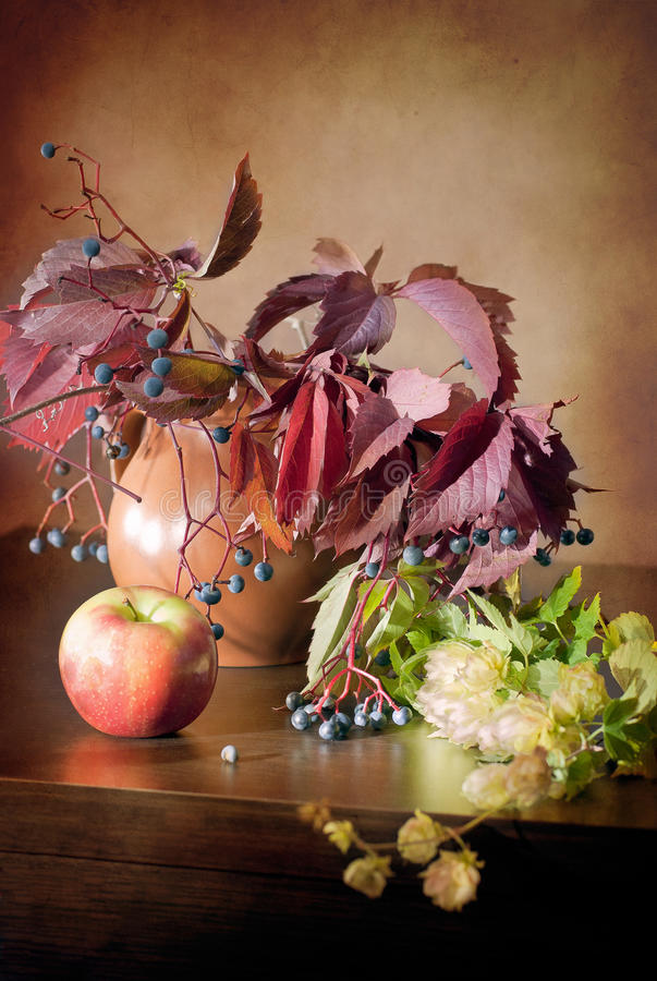Still life in vintage style with wild grapes, apple, jug and hops on a wooden dark table. Image for printed materials and backgrounds royalty free stock photography
