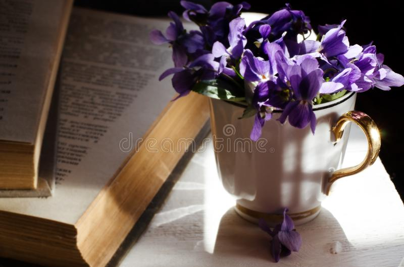Still life with violet in white cup, old books. Romantic spring floral background. stock photos
