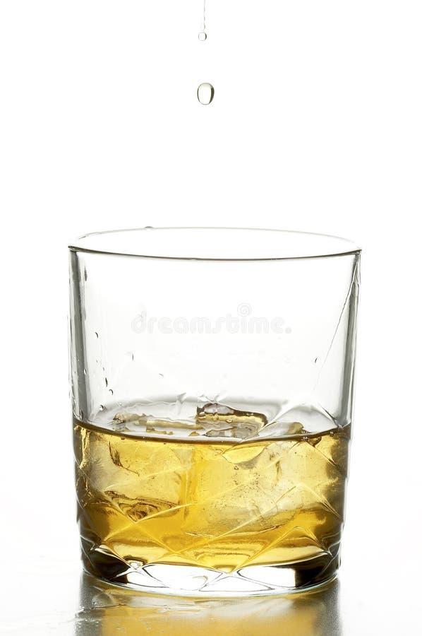 Still life with whiskey stock photo