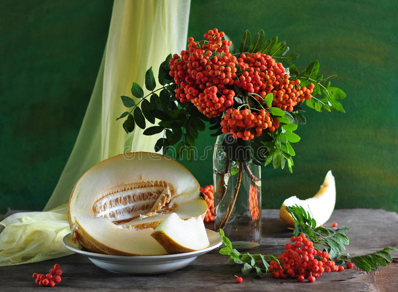 Download Still Life With A Wild Ash And Melon Stock Image - Image: 15403725