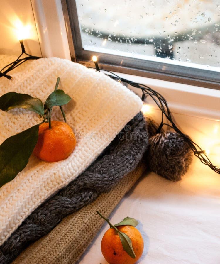 Still life winter stock image