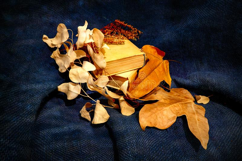 Still life of yellow dry autumn leaves lying on books close up on burlap royalty free stock photos
