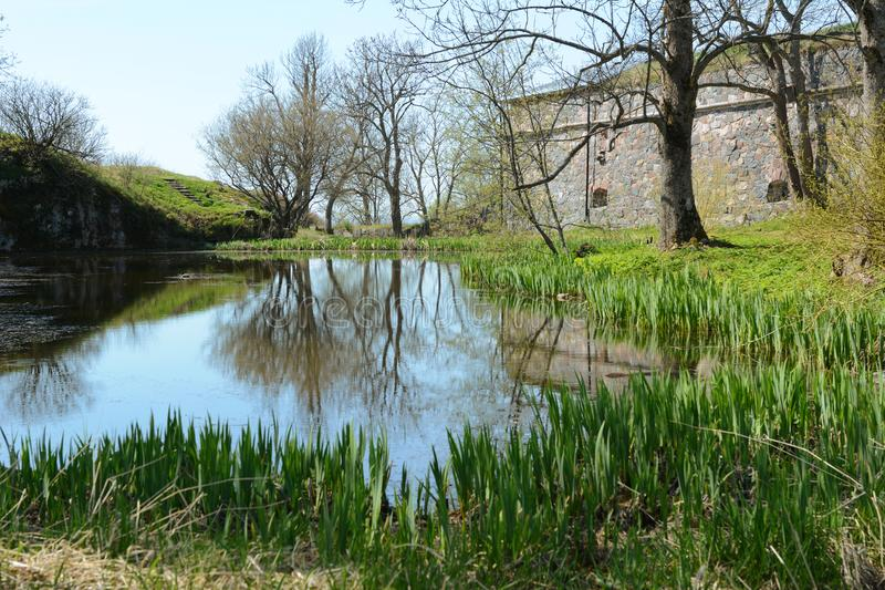 Still pond edged by green rushes on Suomenlinna island royalty free stock image