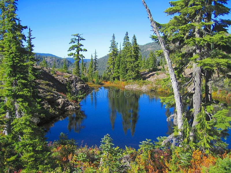 Fall Landscape at Ash Pond on the Forbidden Plateau, Strathcona Provincial Park, Vancouver Island, British Columbia, Canada. Still reflection of fall landscape stock image