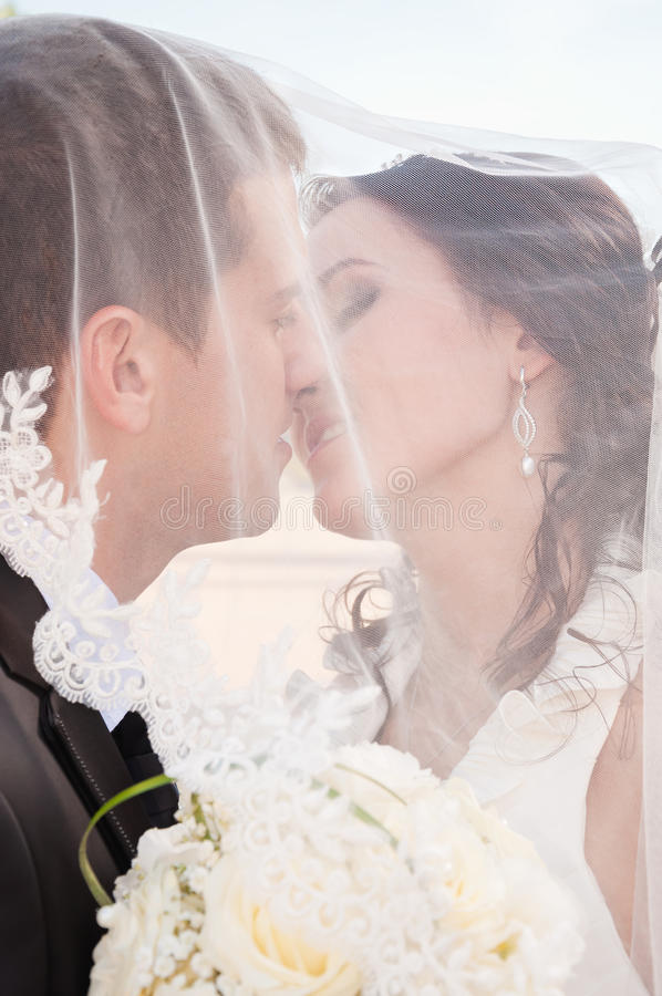 Stilla kyssen royaltyfri bild