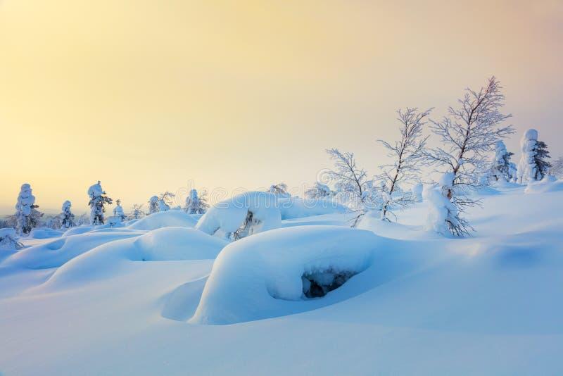 Stilla vinterbakgrund av den nordliga naturen på soluppgångtid royaltyfria bilder