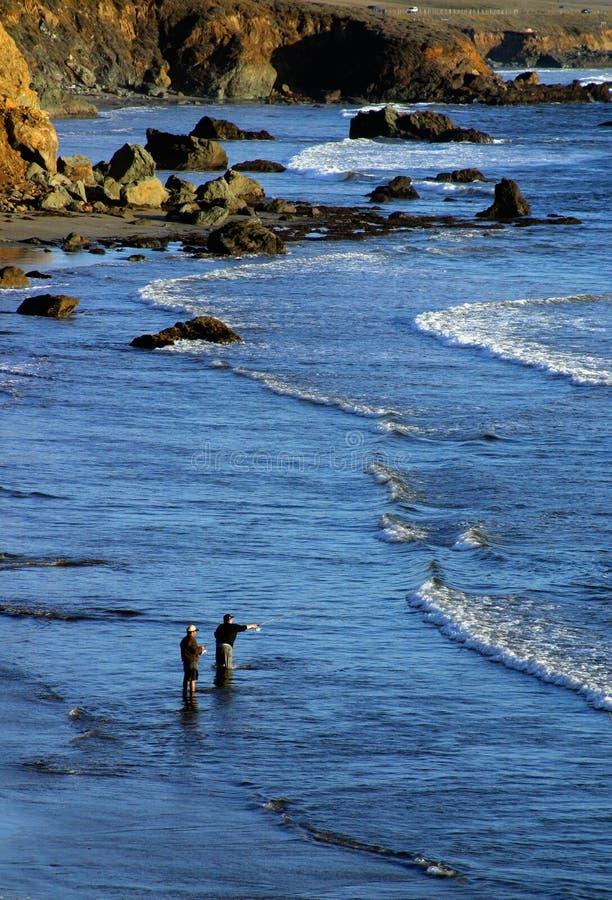 Download Stillahavs- fiskehav arkivfoto. Bild av shoreline, rekreation - 44322