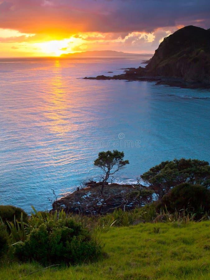 Stillahavs- soluppgång arkivfoto
