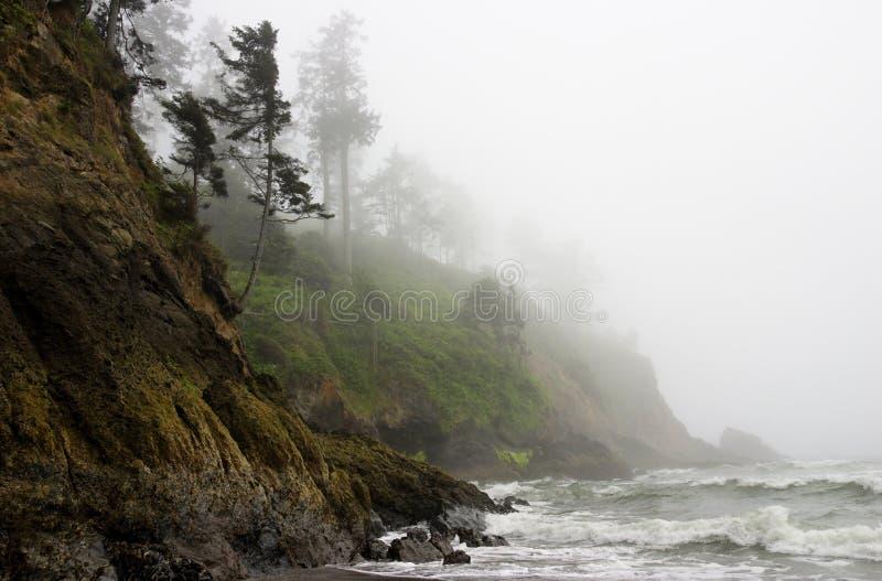 Stillahavs- stenig ojämn shoreline för kustdimma fotografering för bildbyråer