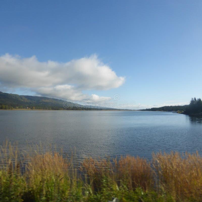 Stillahavs- vita för moln och blåa himlar för öppning in i Alaska som är inre med grässlättar och royaltyfria bilder
