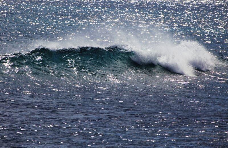 Stillahavs- wave för avbrottsvapenhav royaltyfri fotografi