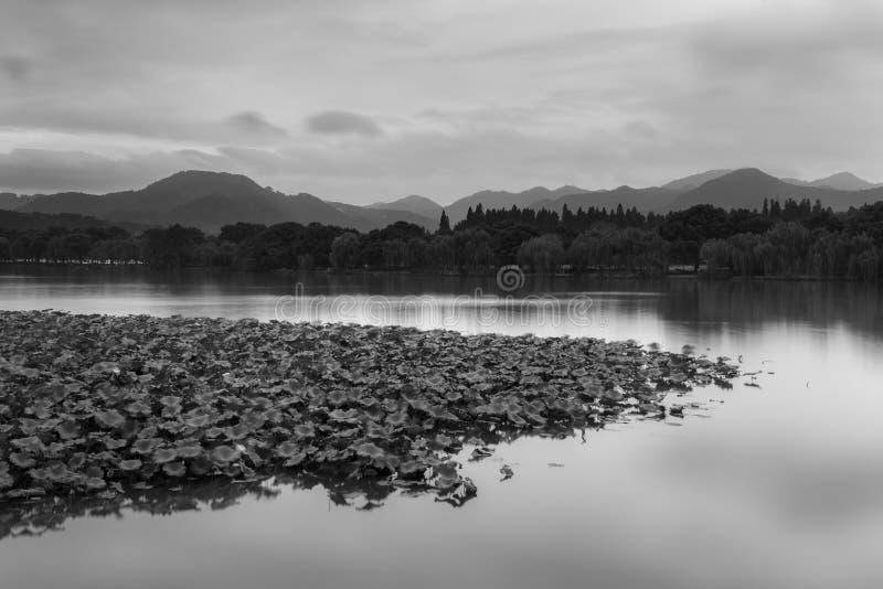 Stille auf einem chinesischen See lizenzfreie stockbilder