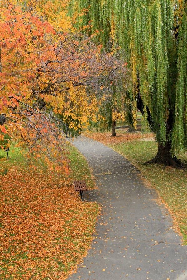 Stille gang door het park, met Dalingsgebladerte die aan vreedzaam gevoel toevoegen royalty-vrije stock afbeelding
