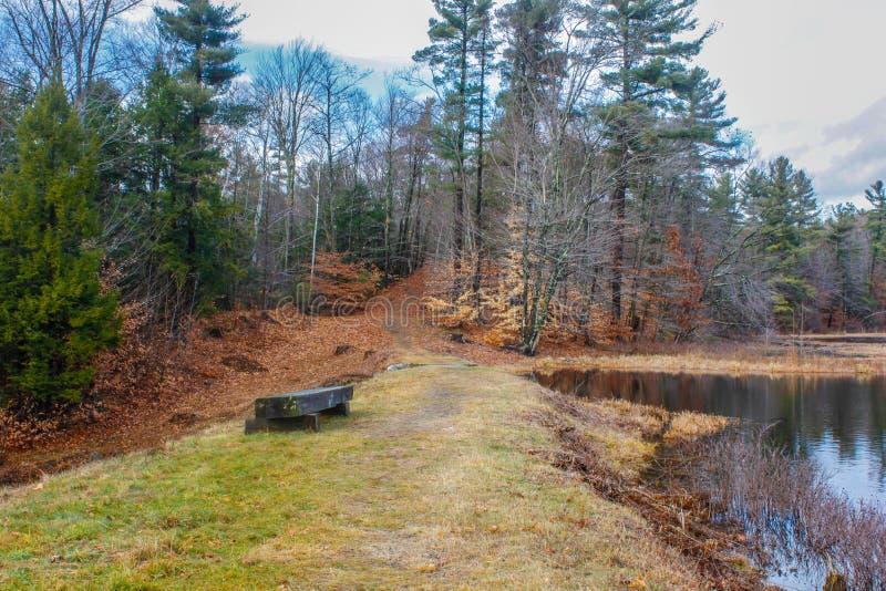 Stille reflectonvlek op New Hampshire-vijver stock foto's
