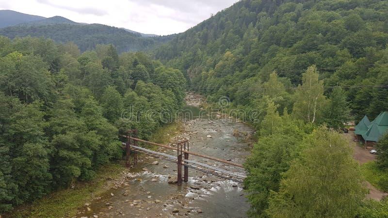 Stille rivier onder het bergbos stock fotografie