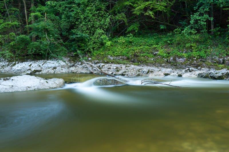 Stille rivier Rettenbach in de zomer, lange blootstelling royalty-vrije stock foto's