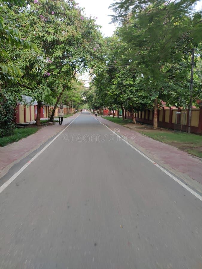 Stille Straßengrün-Hintergrundeffektumwelt stockfotos