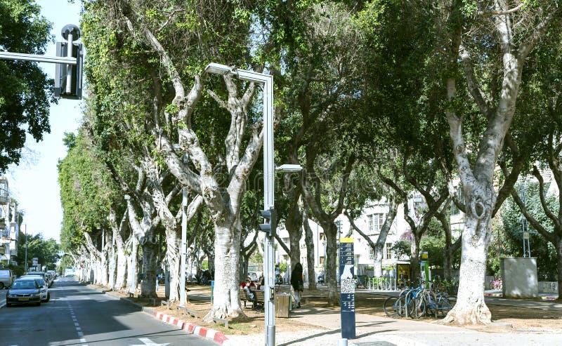 Stille straat in het centrum van nieuw Tel Aviv, Israël royalty-vrije stock afbeeldingen