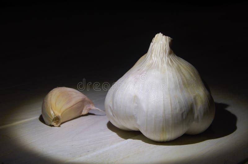 Stilleben av ett huvud och en kryddnejlika av vitlök royaltyfri fotografi