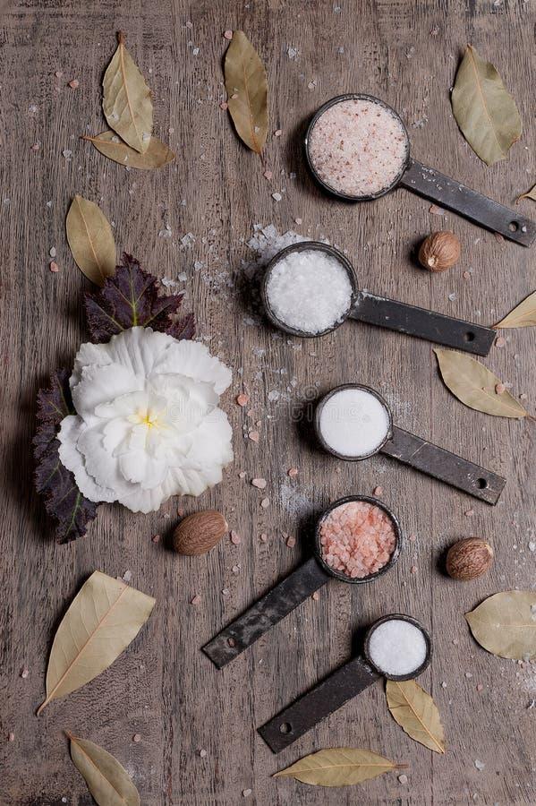 Stilleben av fem olika typer av salt fotografering för bildbyråer