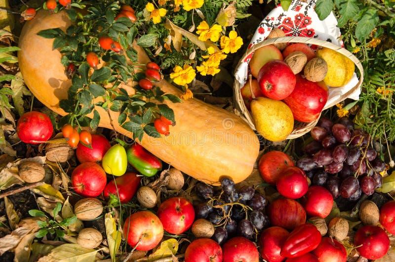 Stilleben av frukt och grönsaker i trädgården royaltyfri foto