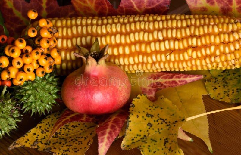 Stilleben av hösten royaltyfria bilder