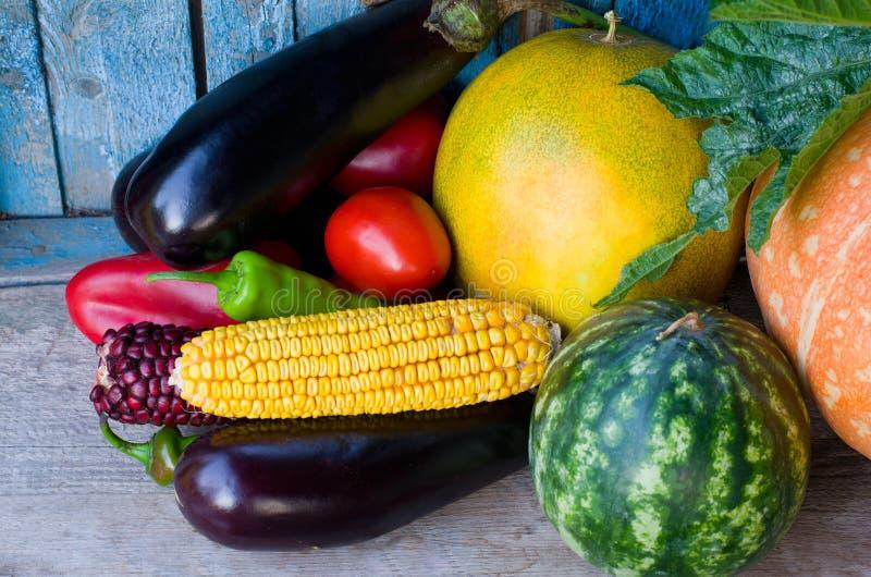 Stilleben av höstgrönsaker: aubergine, havre, vattenmelon, cantaloupmelon och tomater royaltyfria bilder