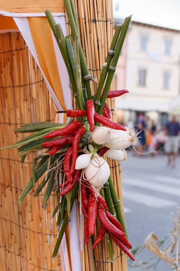 Stilleben av nya grönsaker och kryddor på sugrörmats arkivbild