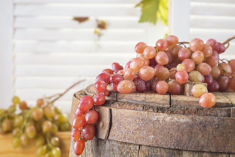 Stilleben av röda druvor på en trätrumma fotografering för bildbyråer