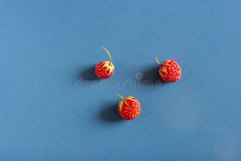Stilleben av tre lösa jordgubbar på blåa keramiska tegelplattor med dammtextur och reflexion Sidosikt fr?n ?ver Skogstrawb arkivbild