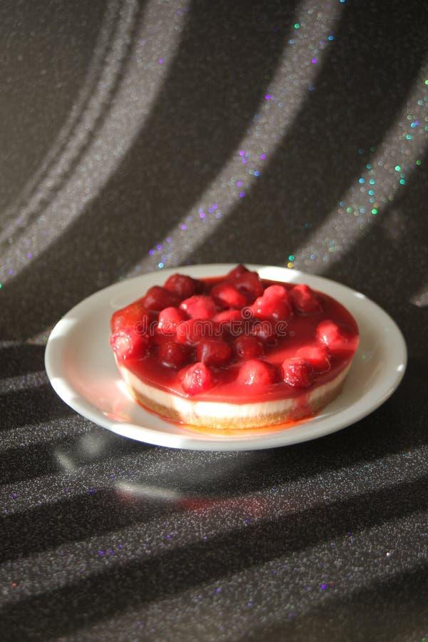 Stilleben Cheesecake_0048 royaltyfri foto