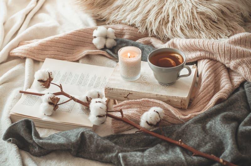 Stilleben i hemmiljö av vardagsrum Tröjor och kopp te med en kotte på böckerna läst Hemtrevligt höstvinterbegrepp royaltyfri fotografi