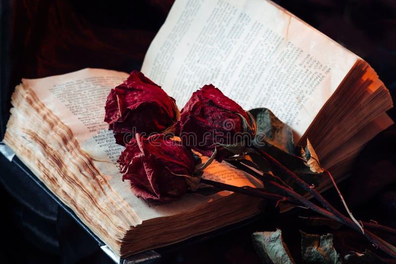 Stilleben med den gamla boken och rosor arkivfoto