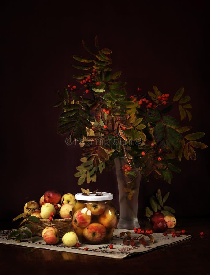 Stilleben med den lilla äpplen och rönnen royaltyfri bild