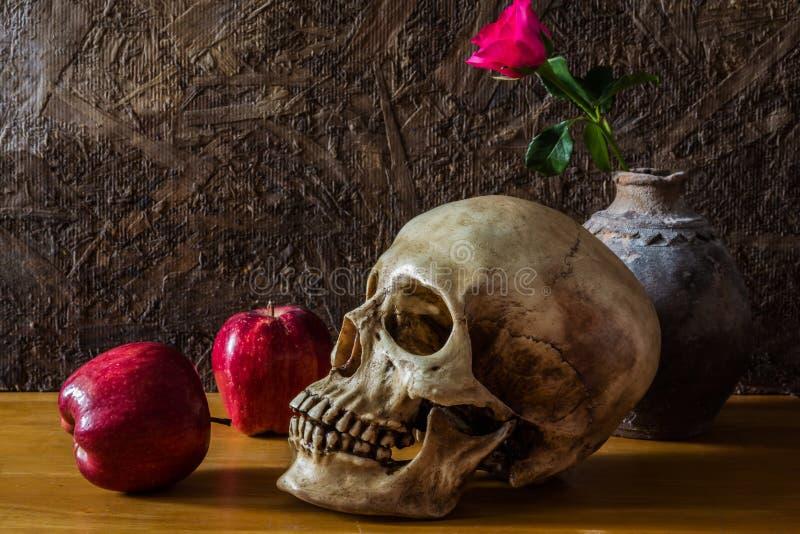 Stilleben med den mänskliga skallen med den röda rosen i den gamla vasen och apen royaltyfria bilder
