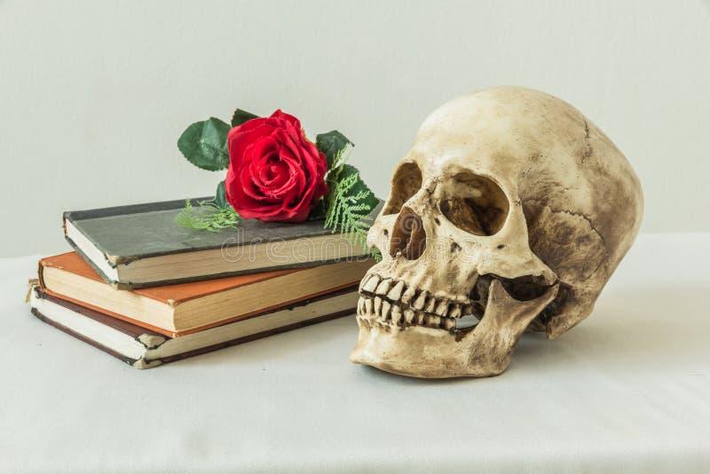 Stilleben med en mänsklig skalle med röda rosor för en fejka och böcker royaltyfri foto