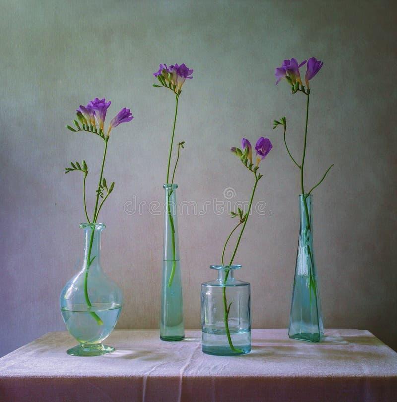 Stilleben med freesior i flaskor arkivbilder