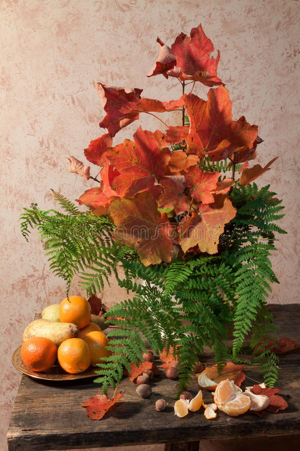 Stilleben med frukt, ferns och leaves royaltyfri bild
