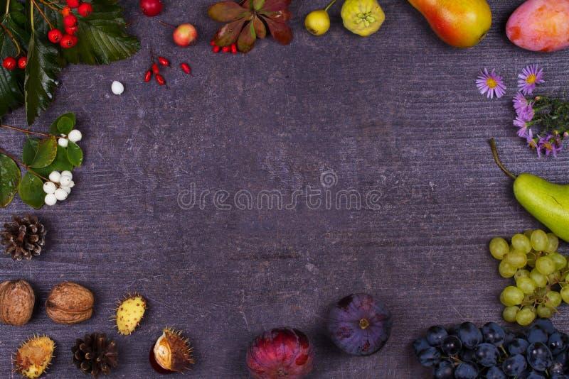 Stilleben med frukter och jordgubbar - äpplen, plommoner, druvan, päron, sidor, sörjer kottar, fikonträd, blommor, kastanjer Top  royaltyfri foto