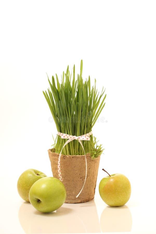 Stilleben med gräs, äpplen royaltyfria bilder