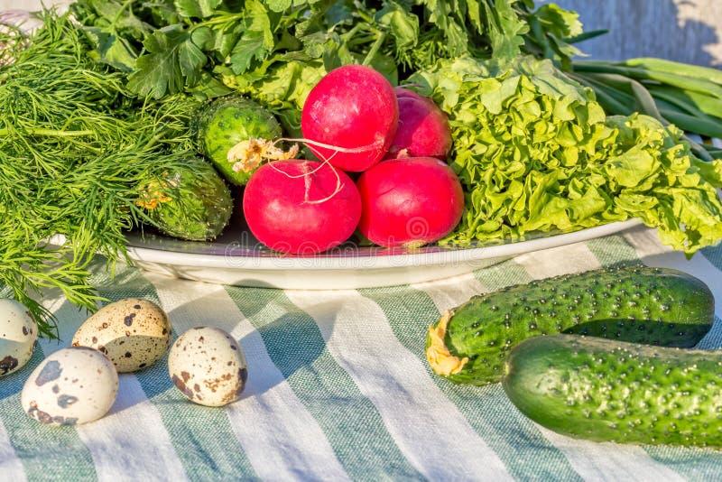 Stilleben med nya vårgrönsaker och vaktelägg, närbild arkivfoto