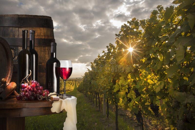 Stilleben med rött vin arkivbilder