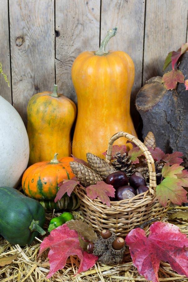 Stilleben med två gula pumpor, sörjer den vide- korgen som fylls med, kottar, ekollonar, kastanjer och Autumn Leaves på ett hö arkivfoto